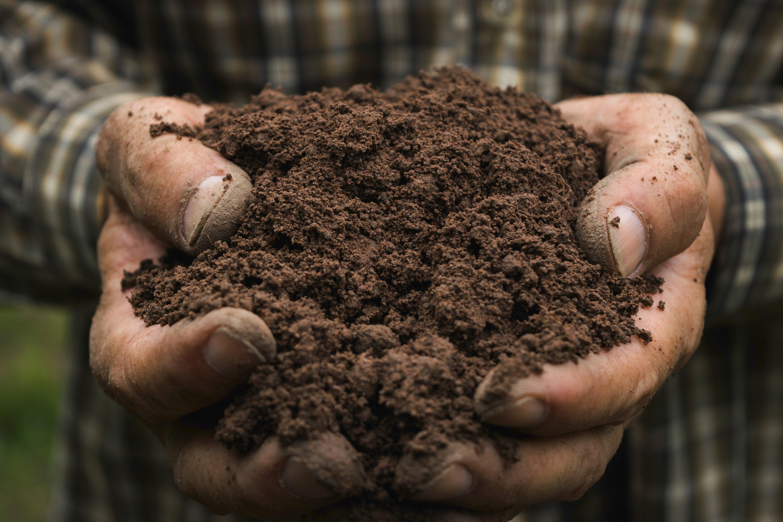 Indigo_Carbon_Soil_Hero